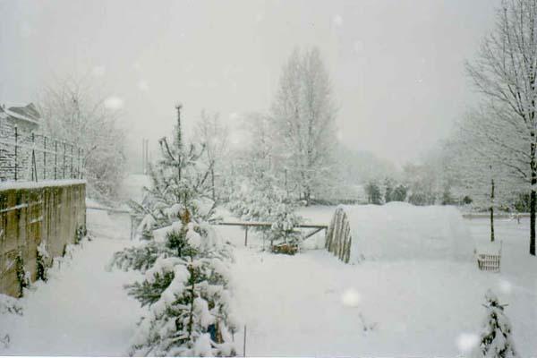 [cml_media_alt id='3128']31dic 1995 neve su Parma[/cml_media_alt]