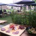 salumi al Garden Food